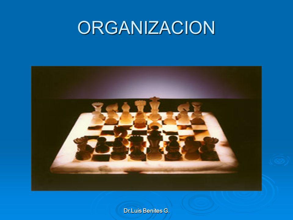 ORGANIZACION Dr.Luis Benites G.