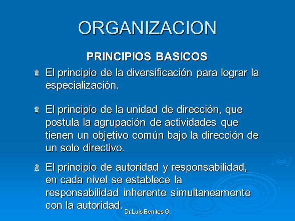 ORGANIZACION PRINCIPIOS BASICOS