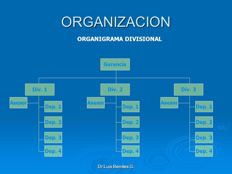 ORGANIGRAMA DIVISIONAL