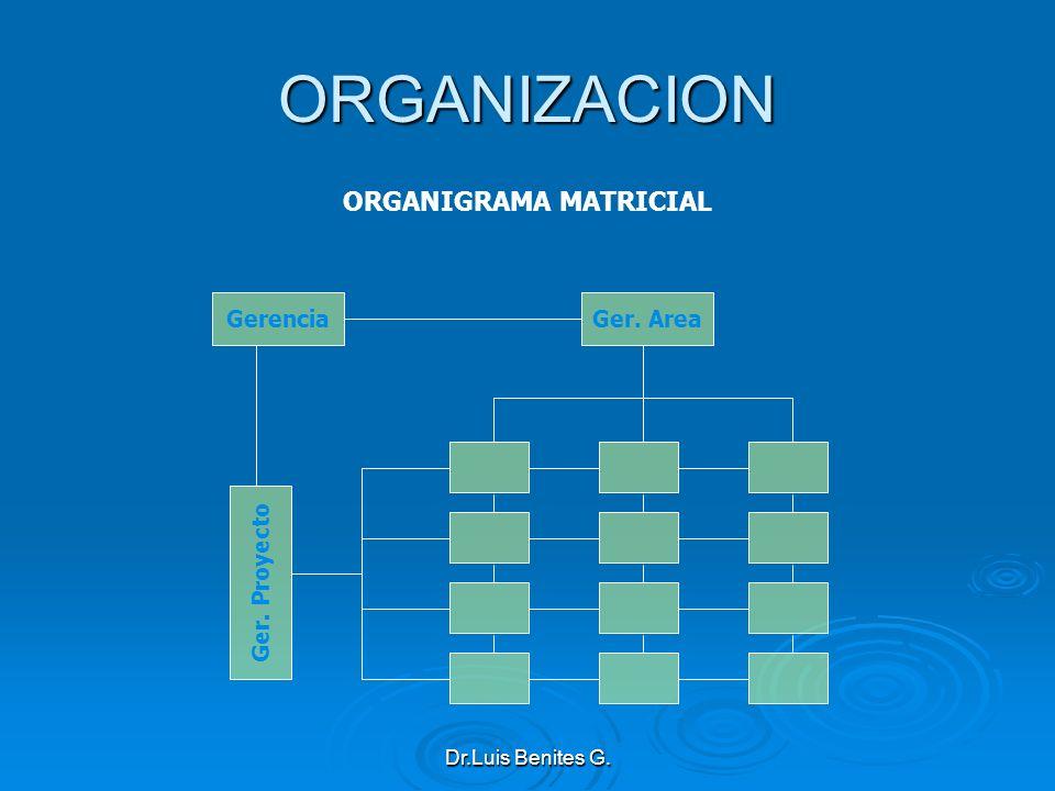 ORGANIGRAMA MATRICIAL