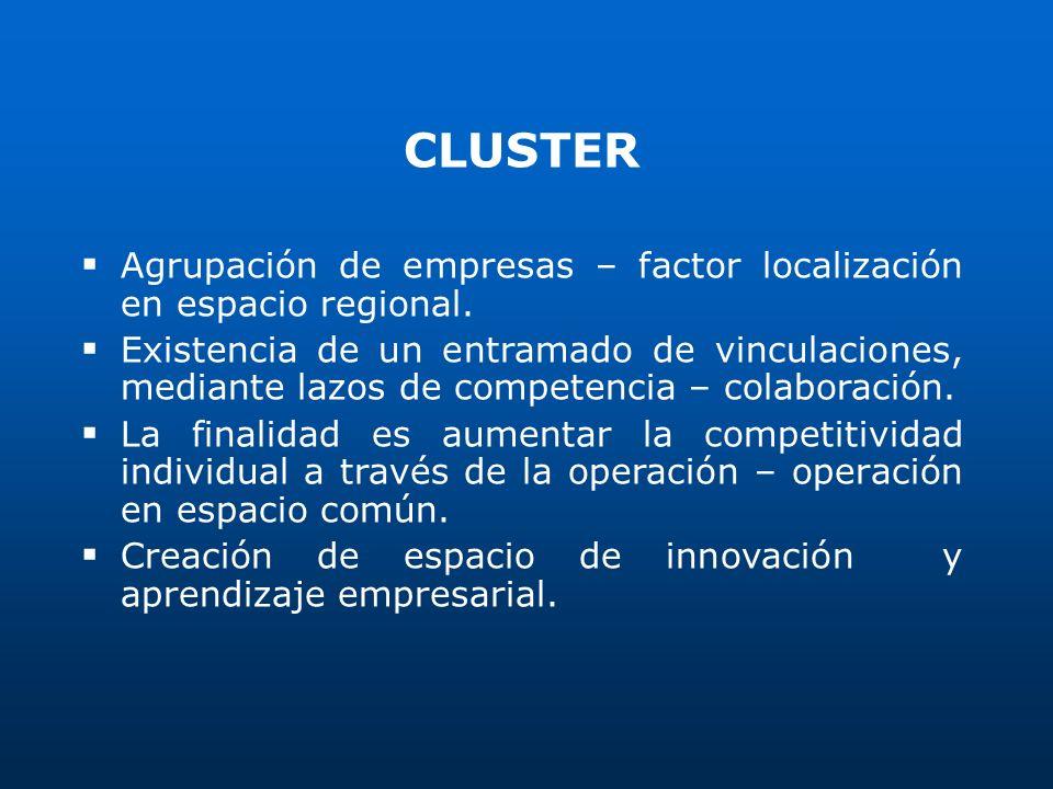 CLUSTER Agrupación de empresas – factor localización en espacio regional.
