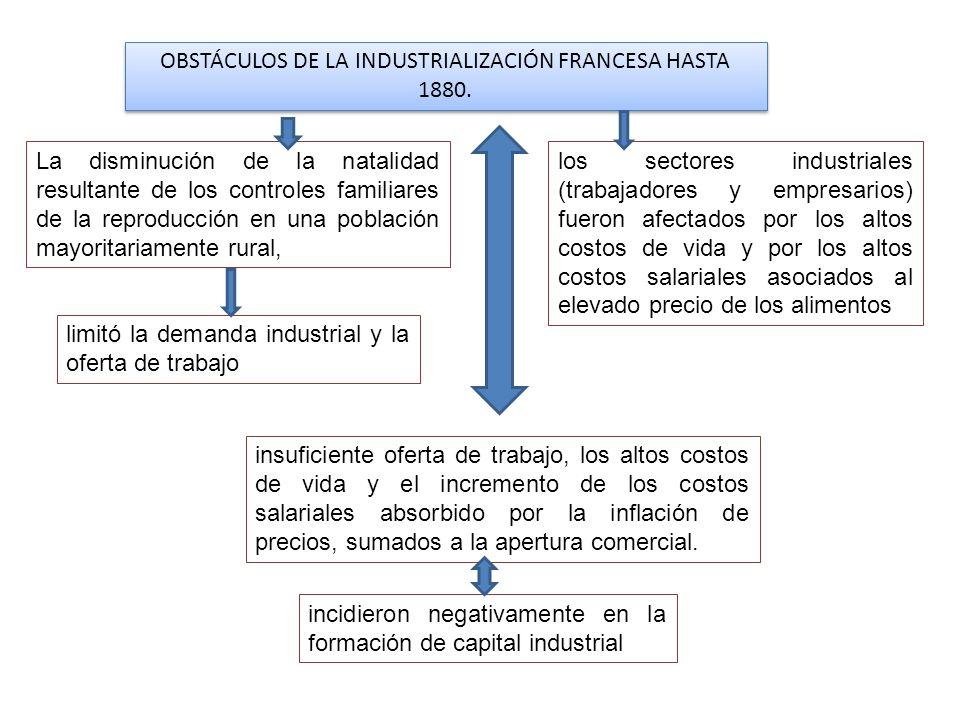 OBSTÁCULOS DE LA INDUSTRIALIZACIÓN FRANCESA HASTA 1880.