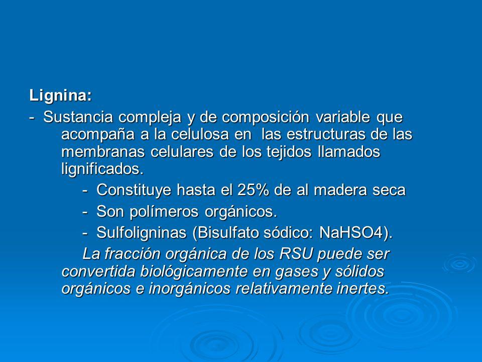 Lignina: