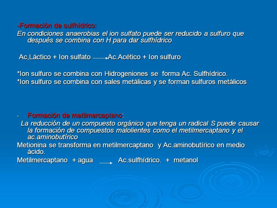 -Formación de sulfhídrico: