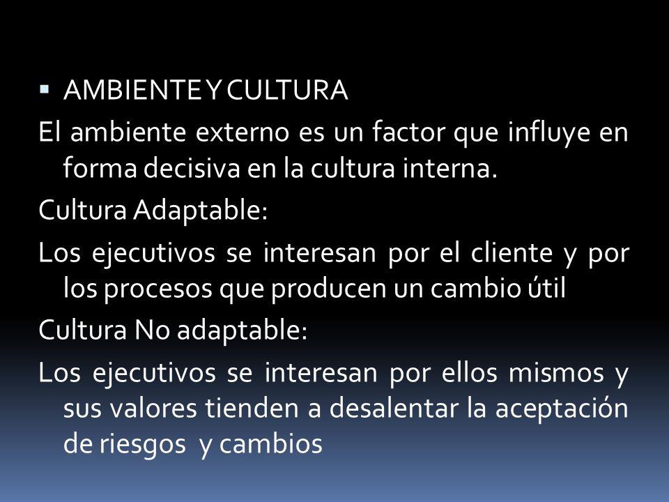 AMBIENTE Y CULTURA El ambiente externo es un factor que influye en forma decisiva en la cultura interna.