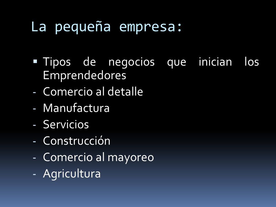 La pequeña empresa: Tipos de negocios que inician los Emprendedores