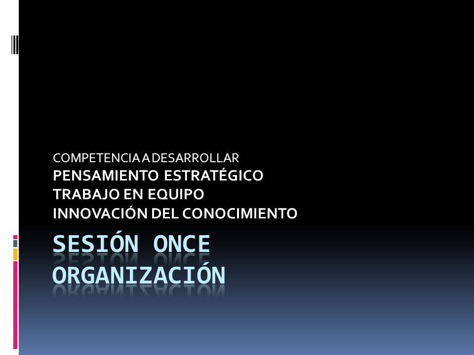 SESIÓN ONCE ORgAnIzación