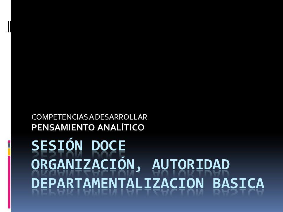 SESIÓN DOCE ORGANIZACIÓN, AUTORIDAD DEPARTAMENTALIZACION BASICA