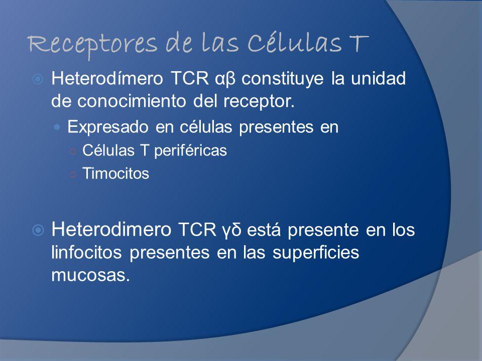 Receptores de las Células T