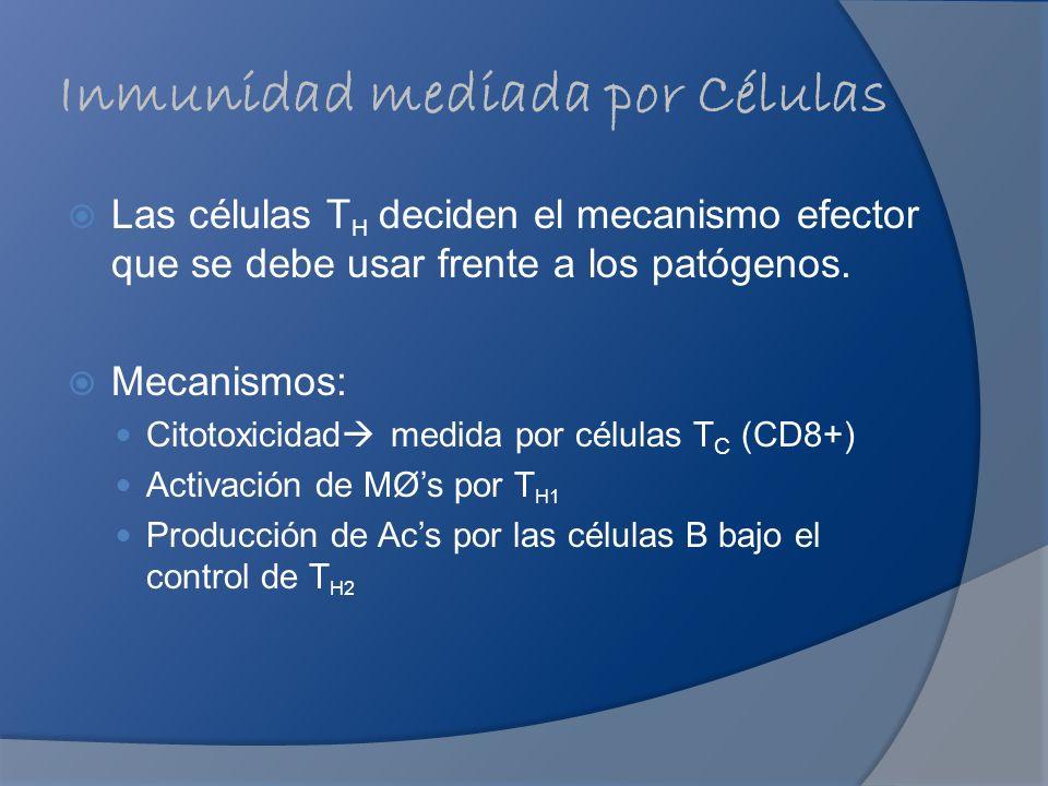 Inmunidad mediada por Células