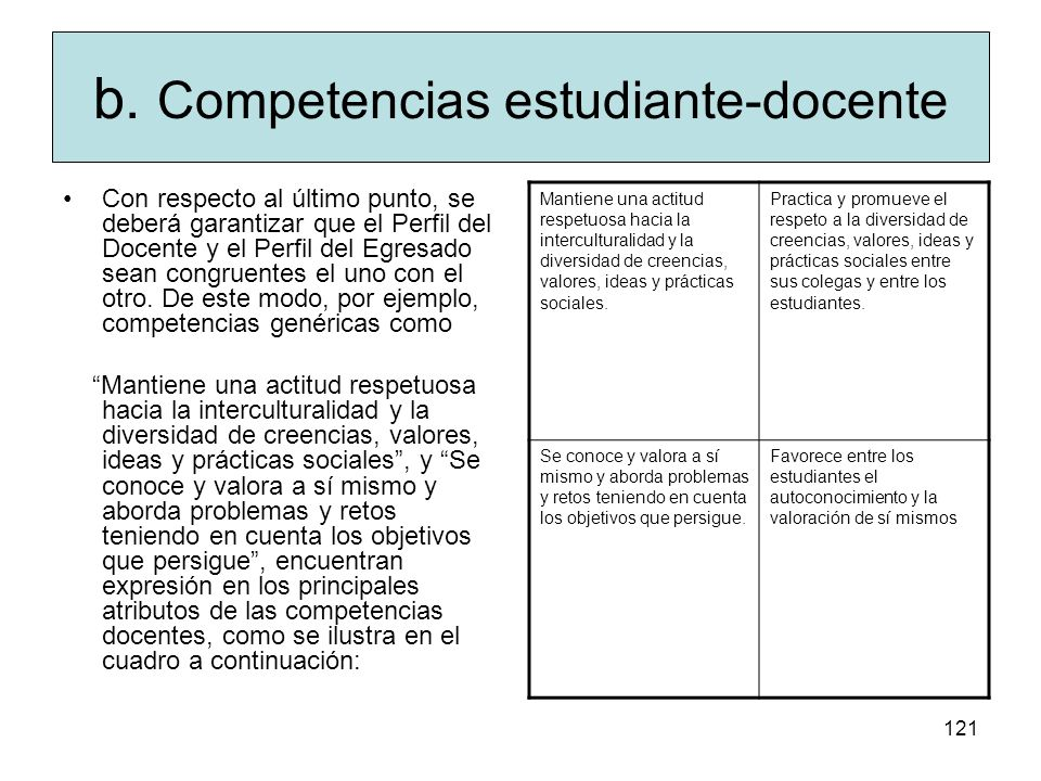 b. Competencias estudiante-docente