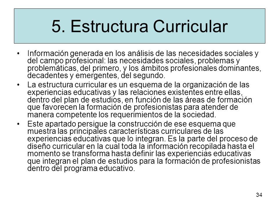 5. Estructura Curricular