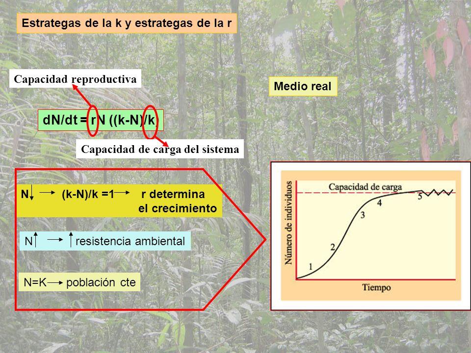 dN/dt = rN ((k-N)/k) Estrategas de la k y estrategas de la r