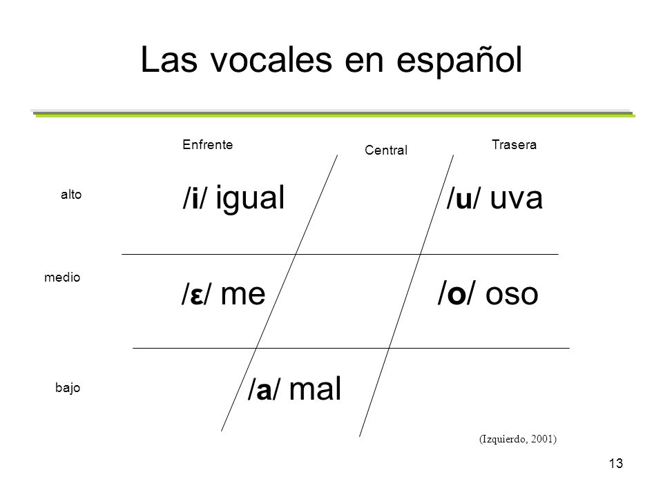 Las vocales en español /i/ igual /u/ uva /ε/ me /o/ oso /a/ mal