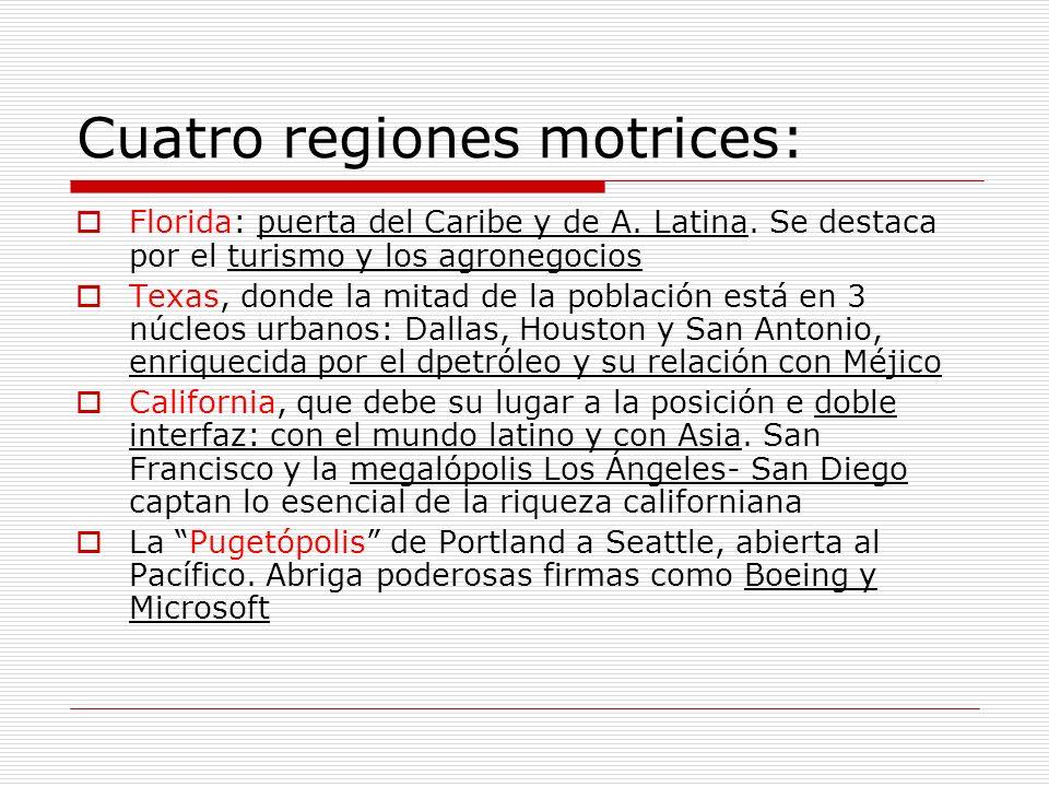 Cuatro regiones motrices:
