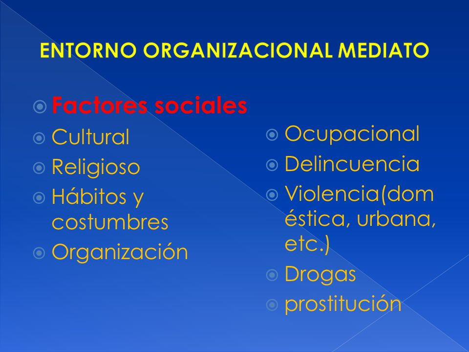 ENTORNO ORGANIZACIONAL MEDIATO