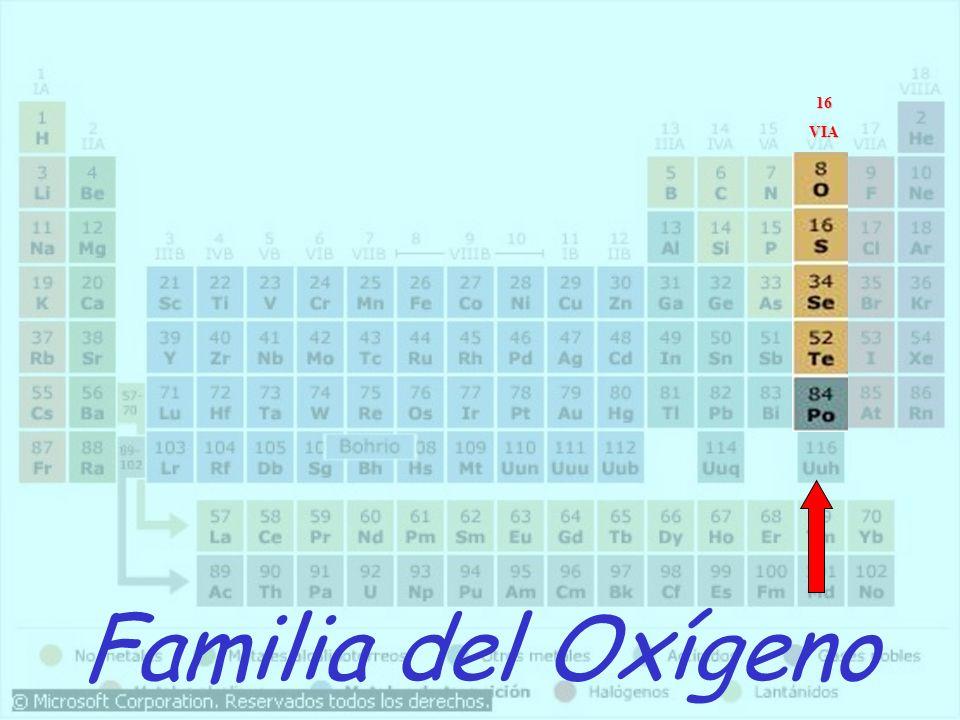 16 VIA Familia del Oxígeno