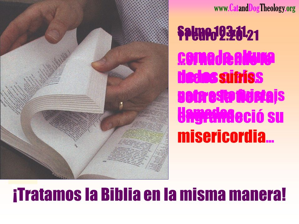 ¡Tratamos la Biblia en la misma manera!