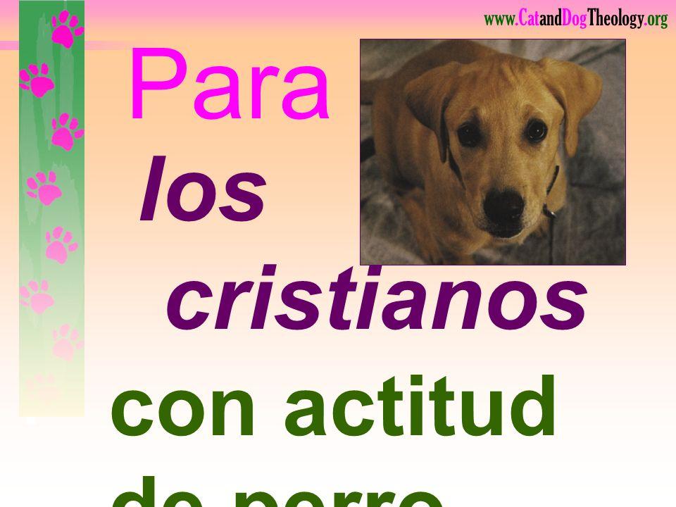 Para los cristianos lea. con actitud de perro 104