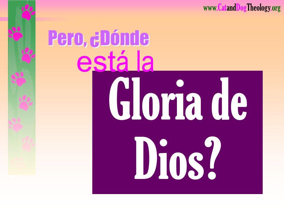 Pero, ¿Dónde está la Gloria de Dios Lea.
