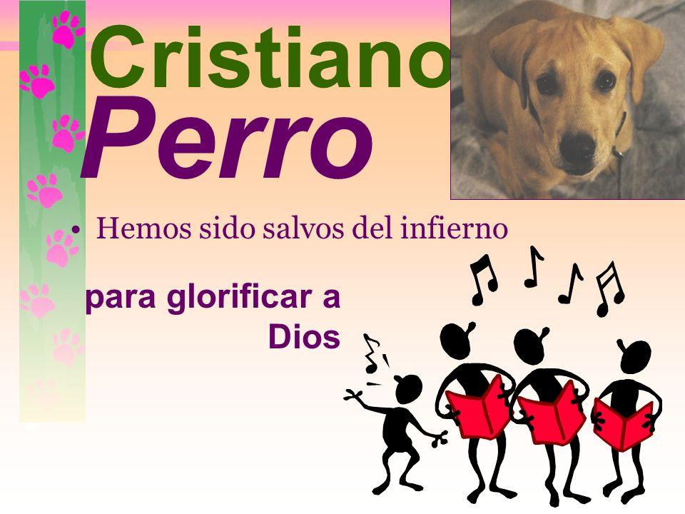 Perro Cristiano para glorificar a Dios Hemos sido salvos del infierno
