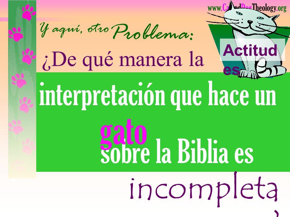 gato interpretación que hace un sobre la Biblia es incompleta