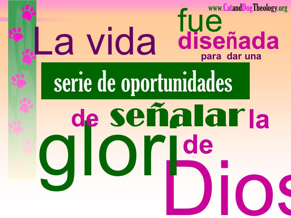gloria Dios La vida fue señalar serie de oportunidades la de diseñada