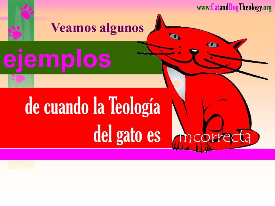 de cuando la Teología del gato es