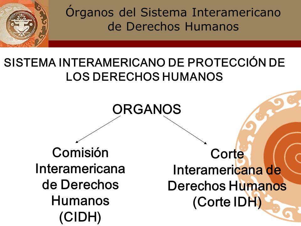 Lujo Imágenes Del Sistema De órganos Humanos Patrón - Anatomía de ...