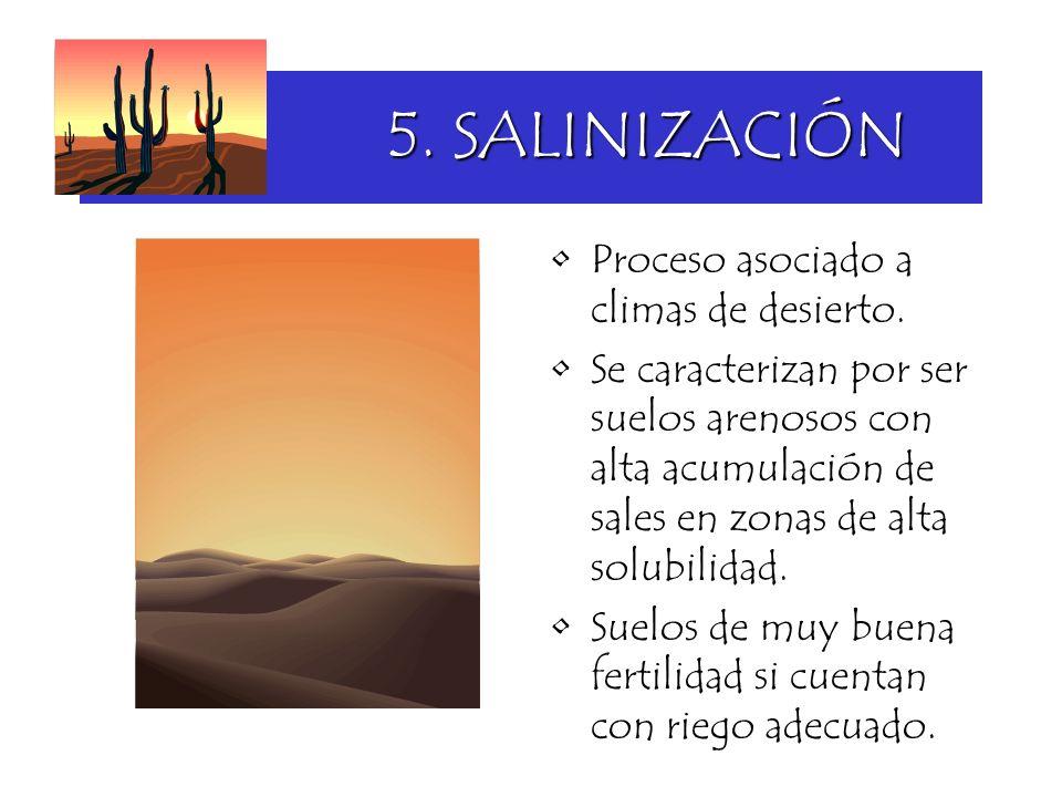 5. SALINIZACIÓN Proceso asociado a climas de desierto.