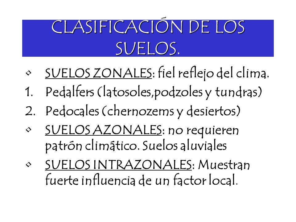 CLASIFICACIÓN DE LOS SUELOS.