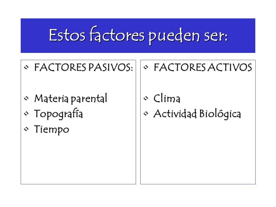 Estos factores pueden ser: