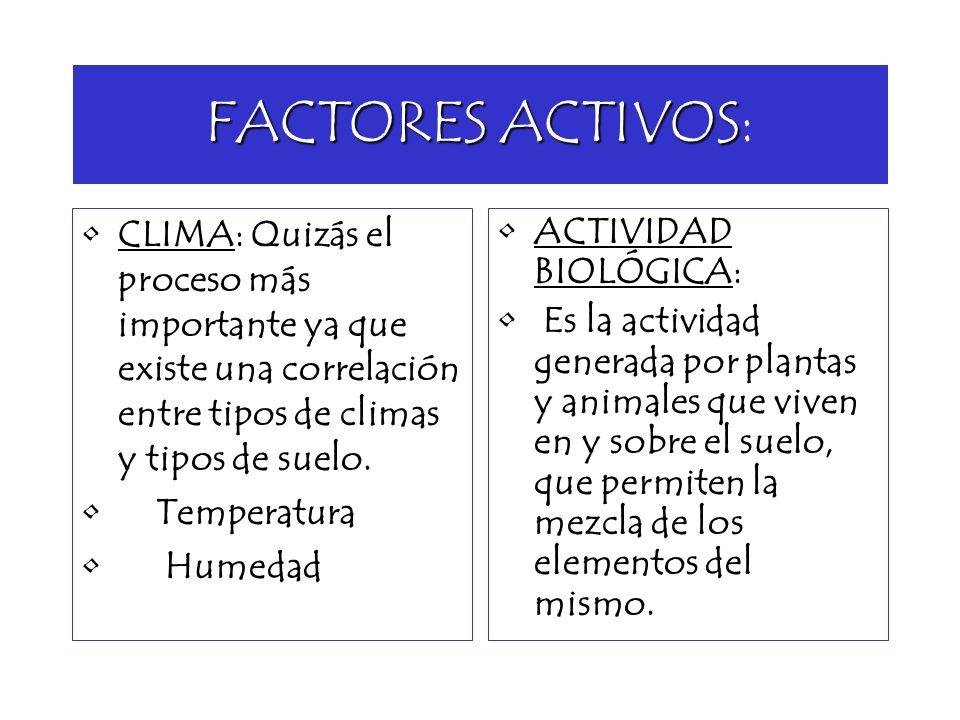 FACTORES ACTIVOS:CLIMA: Quizás el proceso más importante ya que existe una correlación entre tipos de climas y tipos de suelo.