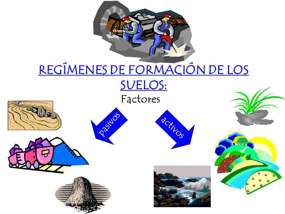 REGÍMENES DE FORMACIÓN DE LOS SUELOS: