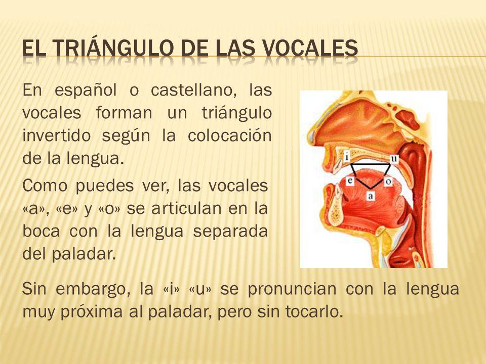 El triÁngulo de las vocales