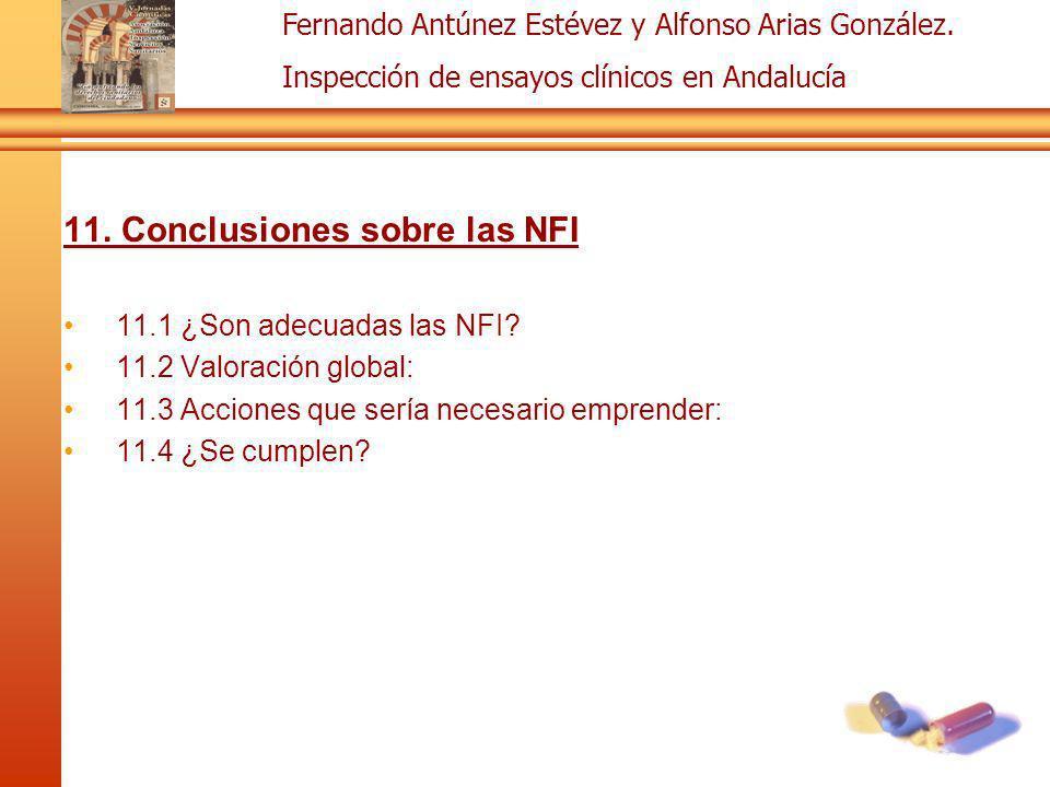11. Conclusiones sobre las NFI