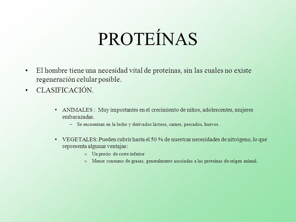 PROTEÍNAS El hombre tiene una necesidad vital de proteínas, sin las cuales no existe regeneración celular posible.