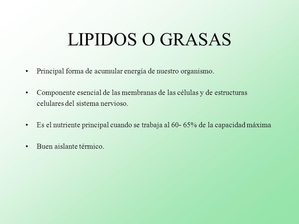 LIPIDOS O GRASAS Principal forma de acumular energía de nuestro organismo. Componente esencial de las membranas de las células y de estructuras.