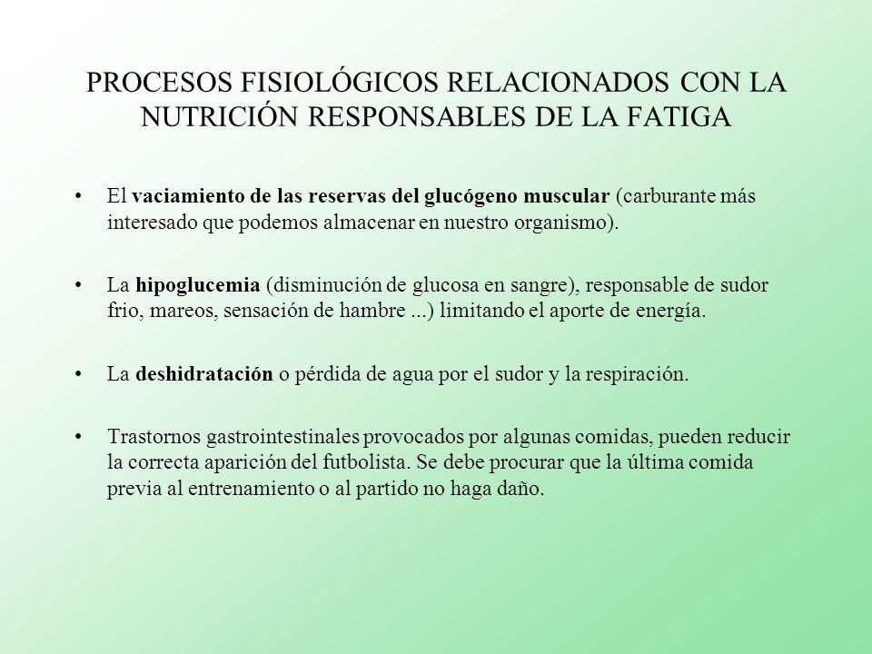 PROCESOS FISIOLÓGICOS RELACIONADOS CON LA NUTRICIÓN RESPONSABLES DE LA FATIGA