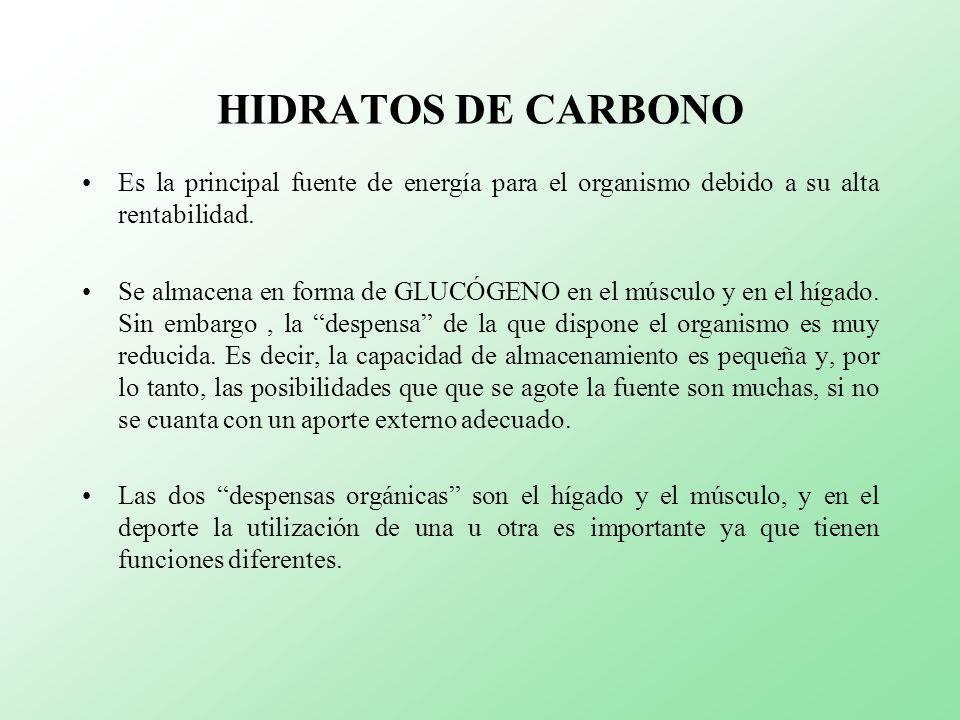 HIDRATOS DE CARBONOEs la principal fuente de energía para el organismo debido a su alta rentabilidad.