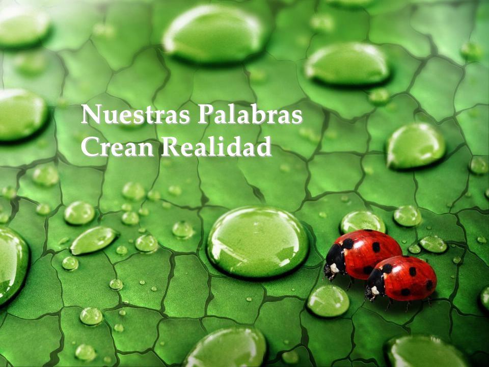 Nuestras Palabras Crean Realidad www.vitanoblepowerpoints.net