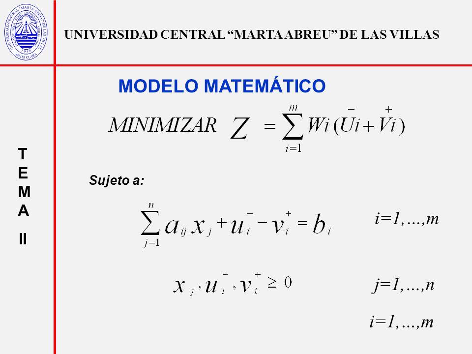 MODELO MATEMÁTICO i=1,…,m j=1,…,n i=1,…,m TEMA II