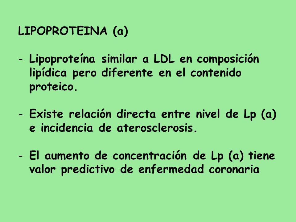 LIPOPROTEINA (a) Lipoproteína similar a LDL en composición lipídica pero diferente en el contenido proteico.