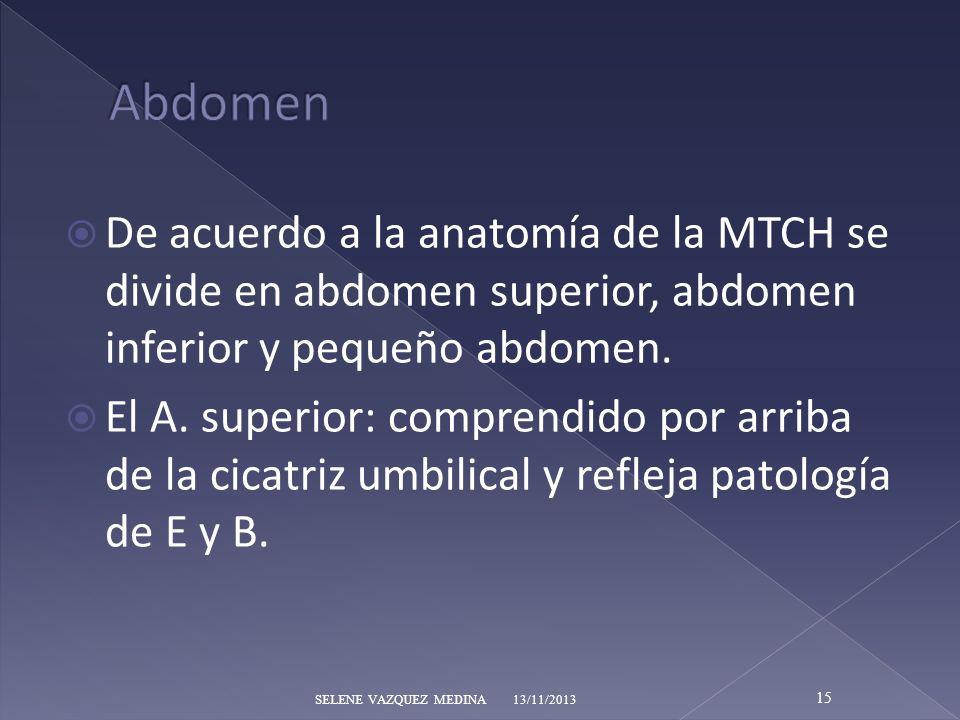Abdomen De acuerdo a la anatomía de la MTCH se divide en abdomen superior, abdomen inferior y pequeño abdomen.