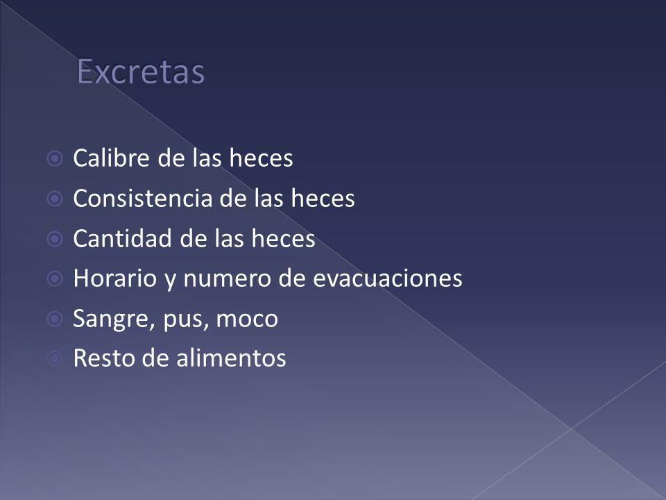Excretas Calibre de las heces Consistencia de las heces