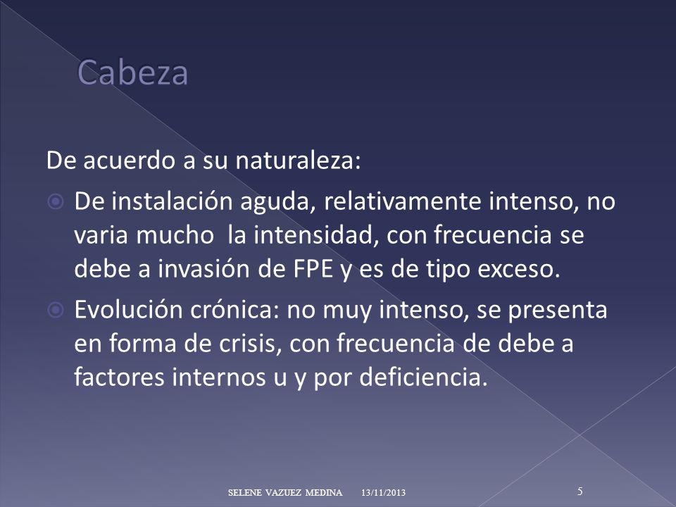 Cabeza De acuerdo a su naturaleza: