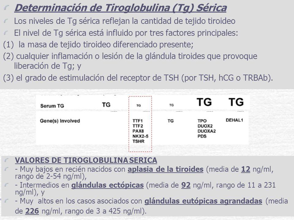 Determinación de Tiroglobulina (Tg) Sérica