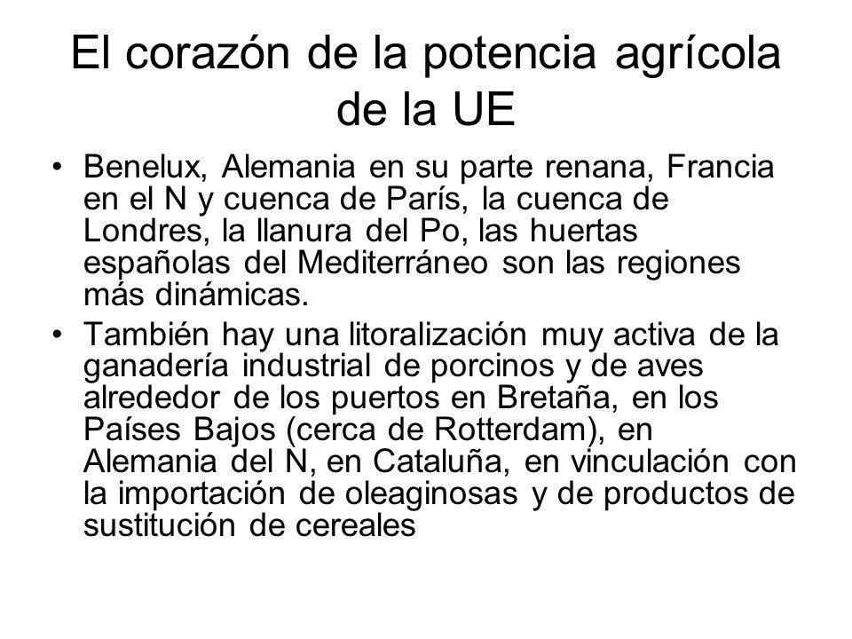 El corazón de la potencia agrícola de la UE