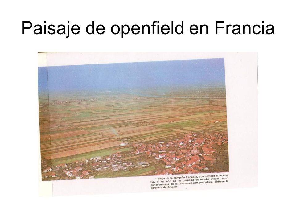 Paisaje de openfield en Francia