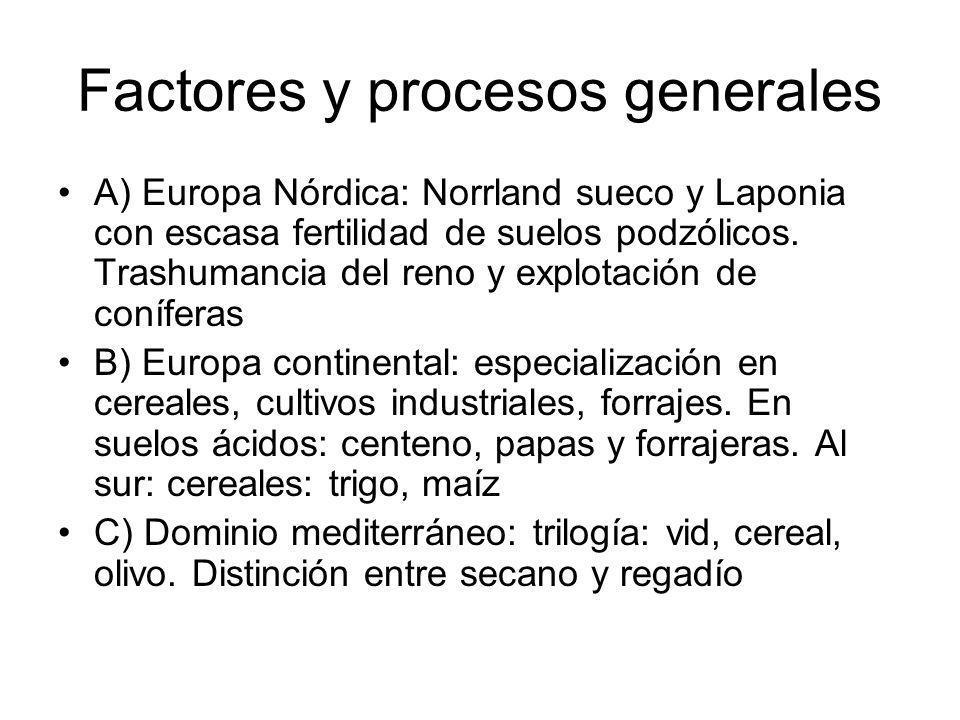 Factores y procesos generales